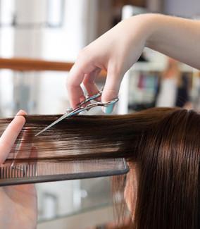 Hair Cut & Maintain